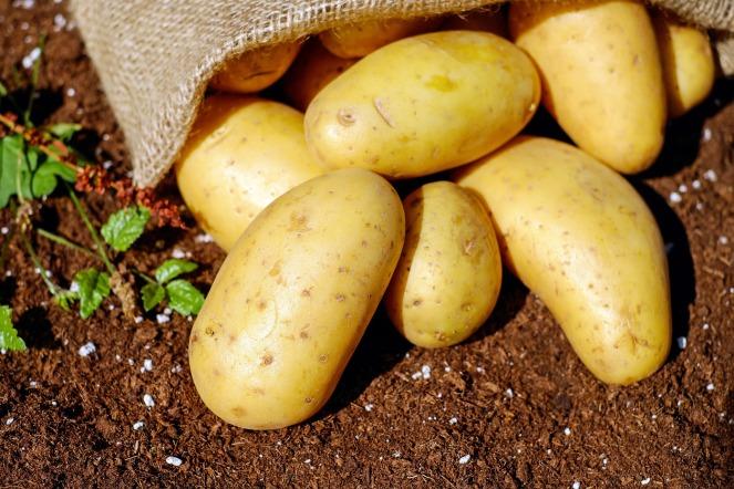 Per la ricetta dei taroz servono delle ottime patate.