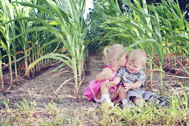 Il mais è un cereale naturalmente senza glutine e per questo adatto all'alimentazione dei celiaci.