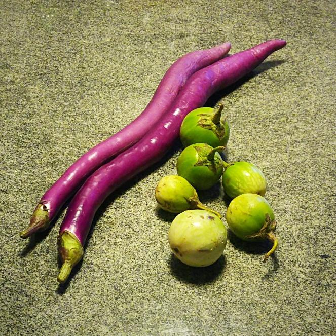 Le due varietà di melanzane utilizzate per la nostra ricetta vegetariana e gluten free: melanzane perline e tonde verdi.