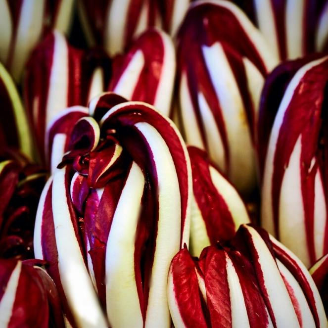 Radicchio tardivo di Treviso: una verdura prelibata con cui è possibile preparare un'infinità di ricette buonissime, come primi piatti, secondi o semplici contorni.