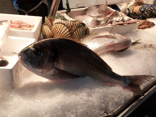 pesce_fresco